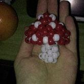Lil Mushroom Guy
