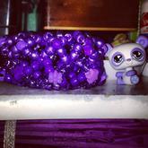 Purplee Panda X-base