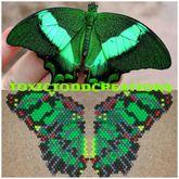 Kandi Butterfly