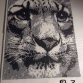 Tiger Hama Mini Beads