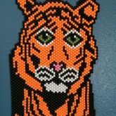 Tiger Peyote