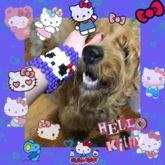 Hello Kitty Skull Cuff + DOG