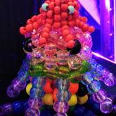 Baby Octopus!!!!