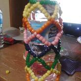 Rainbow Water Bottle Holder